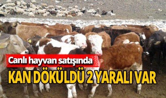 Canlı hayvan satışında kan döküldü