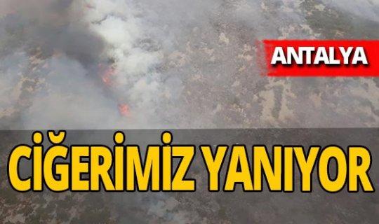 Antalya haber: Antalya yanıyor!