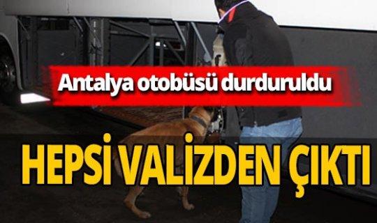 Antalya haber: Yolcu otobüsünde ele geçirildi