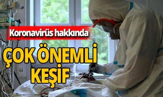 Önemli koronavirüs keşfi!