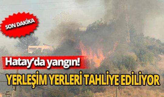 Son dakika: Hatay'da yine yangın çıktı! Tahliyeler başladı!