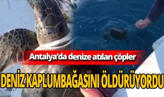 Antalya'da deniz kirliliği yaşamı tehdit ediyor!