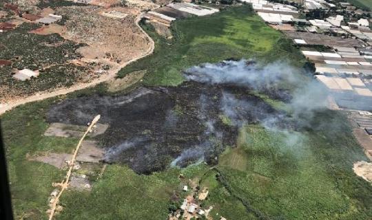 Aksu'da orman yangını