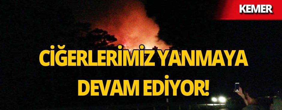 Kemer'de orman yangını!