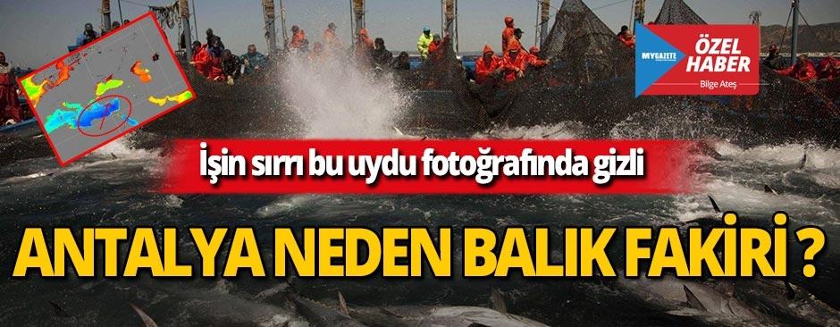 Antalya neden balık fakiri?