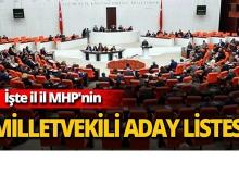 İşte il il MHP'nin Milletvekili aday listesi