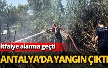 Antalya'da yangın çıktı