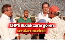 CHP'li Budak'tan inceleme