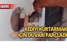Yavru kediyi kurtarmak için duvarı parçaladı