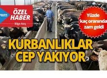 Antalya'da kurbanlıklar kaç para ?
