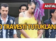 Fuhuş pazarlığı yaptığı genci pencereden attığı iddia edilen travesti tutuklandı
