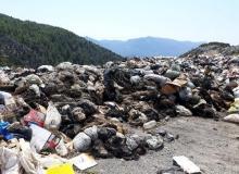 Gündoğmuş'ta hayvan derileri çöpe atıldı