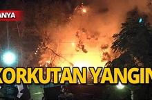 Alanya'da yangın!