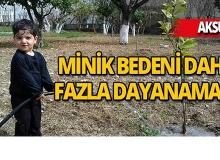 Antalya'da 40 gündür yaşam savaşı veriyordu