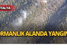 Antalya'da yangın!