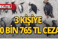 Korkuteli'nde yakalandılar, binlerce lira ceza aldılar!