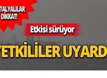 Suriye üzerinden Antalya'ya ulaştı, yetkililer uyardı!