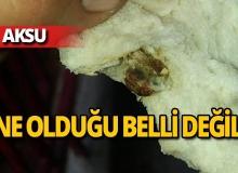 Aksu'da ekmeğin içinden çıkanlara inanamayacaksınız!