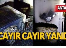 Antalya'da korkunç yangın!