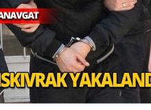 Manavgat'ta şehit emniyet müdürüne hakarete tutuklama!