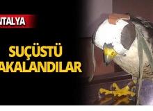 Antalya'da 12 bin lira ceza!
