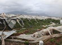 Antalya'da hortum yüzlerce serayı yıktı