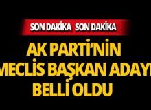AK Parti'nin Meclis Başkan adayı belli oldu!