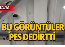 Antalya'da mesire alanı magandaları pes dedirtti!