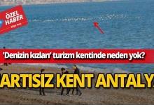 Denizin kızları Antalya sahillerinde neden yok?