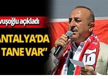 Çavuşoğlu'ndan PKK'lı aday listesi açıklaması