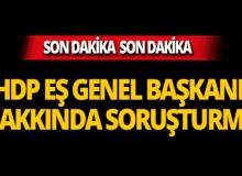 HDP Eş Genel Başkanı Temelli'ye soruşturma