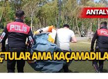 Antalya'da önce uçtular sonra ceza yediler!