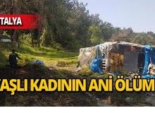 Antalya'da tavuklarını beslemek isterken canından oldu!