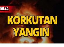 Antalya'da yangın paniği!