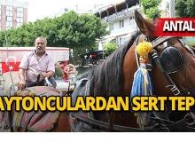 Antalya'da fayton kararına isyan ettiler!