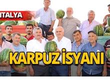 Antalya'da karpuz isyanı!