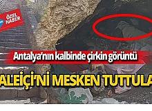 Antalya'nın kalbi Kaleiçi'nde çirkin görüntü!