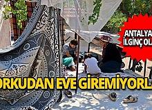 Antalya'da ilginç olay: Korkudan eve giremiyorlar!