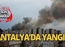 Antalya Kırcami'de korkutan yangın!