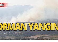 Orman yangını! Söndürme çalışmaları devam ediyor