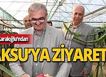 """Vali Karaloğlu: """"Antalya tropik meyve üretiminde önemli bir merkez oluyor"""""""