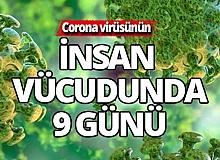 Corona'nın insan vücudundaki 9 günlük etkisi