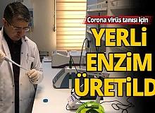 Corona virüs tanısı için yerli enzim üretildi