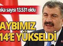 Türkiye'de koronavirüsü nedeniyle toplam can kaybı 214'e çıktı. Toplam vaka sayısı 13 bin 531'e ulaştı.