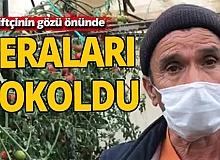 Antalya'da seraları gözlerinin önünde yok oldu