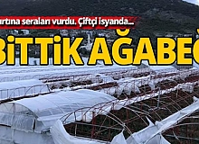 Antalya'daki fırtına seraları vurdu