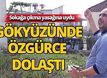Antalyalı vatandaş özgürlüğü uçurtmayla buldu