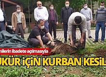 Camilerin ibadete açılmasıyla şükür için hayvan kesildi
