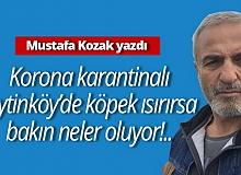 """Mustafa Kozak yazdı; """"Korona karantinalı Zeytinköy'de köpek ısırırsa  bakın neler oluyor!.."""""""