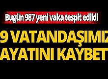 Türkiye'de son 24 saatte 29 kişi hayatını kaybetti
